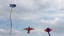Kites on Durdham Downs