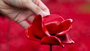 Iconic poppies sculpture on display in Northumberland from September 12th