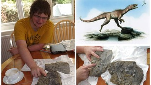 Fossil hunter finds flesh-eating dinosaur's foot on beach
