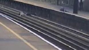 Caught on camera - boy lying across rail tracks
