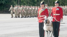 The ram has a long association with the regiment.