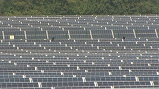 Jobs in doubt after cuts to solar energy subsidies