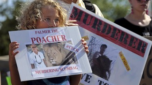 Protesters rally outside Walter Palmer's clinic in Bloomington, Minnesota in July.