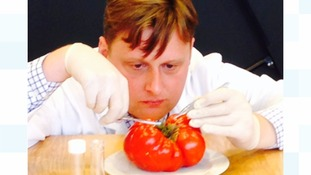 Flower show uses DNA technology to catch tomato growing cheats