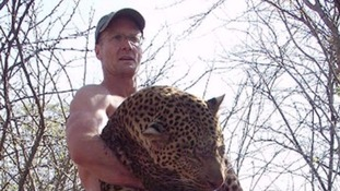 Walter Palmer denies he did anything illegal by killing Cecil the Lion.