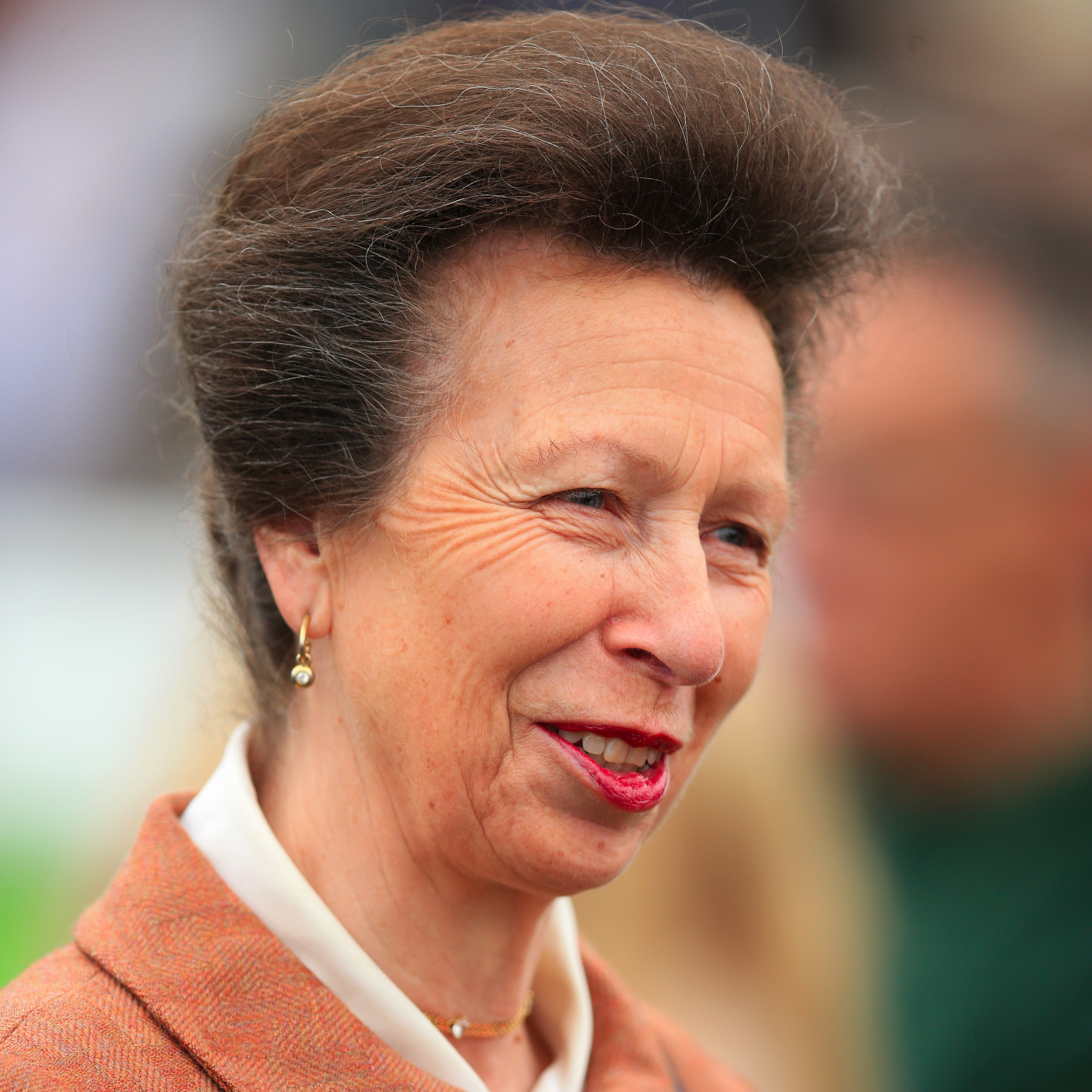 princess anne singles Are celebrities more likely to divorce or break up earlier this week news reports surfaced that princess anne, 67, and her partner had split up is the british princess really single.