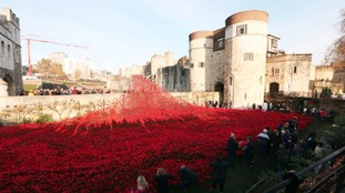 Millions of people have visited the installation Blood Swept Lands and Seas of Red, which was created by ceramic artist Paul Cummins.