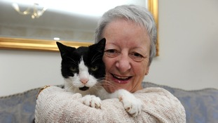 Sue McKenzie with her cat Tom, who she took in as a stray 20 years ago.