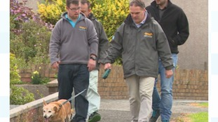 Vulnerable adults in Pembrokeshire are being trained as volunteer dog walkers.