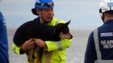 Dog and owner rescued from Brean Down