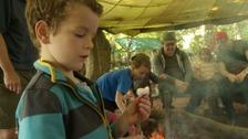 Dad Fest takes place in South Devon