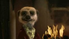 Compare the Meerkat's Orlov boosted the advertising industry.