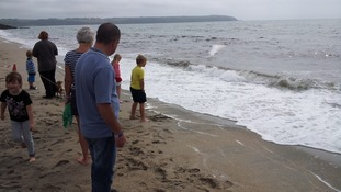 crowds watching stranded whale