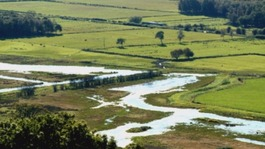 Row over Lyth Valley draining plans