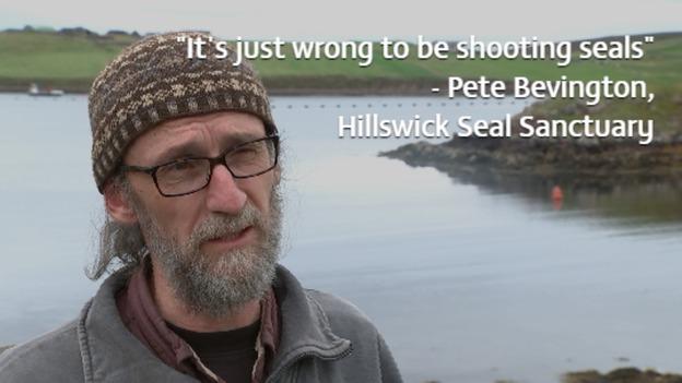 Seal_Pete_1