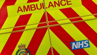 A man has died after being hit by a lorry