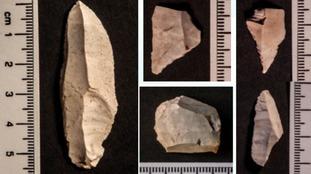 Ice Age tools