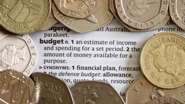 Coins surrounding the word budget 