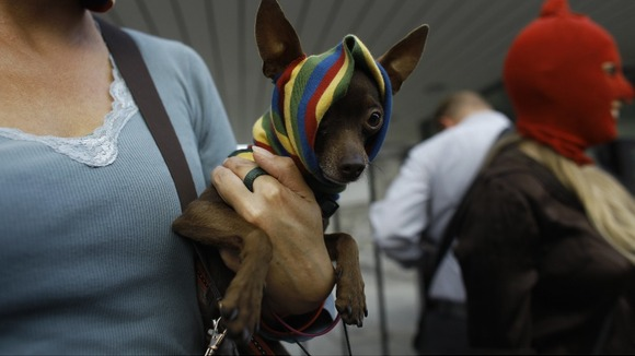 An activist wearing a mask in support of Pussy Riot holds a dog during a protest rally in front of the Russian Embassy, in Warsaw
