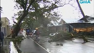 The typhoon toppled trees and damages houses in its path