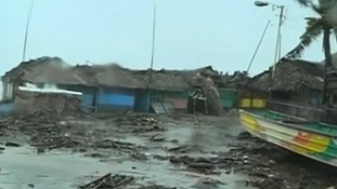 The typhoon toppled trees and damaged houses