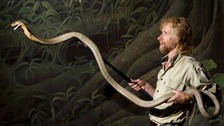 Mark O'Shea is a reptile expert and has handled many snakes before