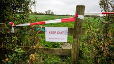 Movement restrictions have been imposed at the farm.