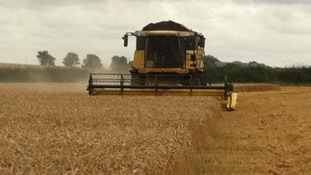 Combine Harvester in Leicester