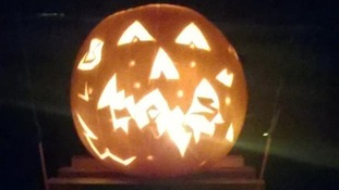 Dexter and Willow's pumpkin from Exeter