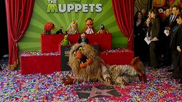 The Muppets celebrate receiving a star on the Hollywood Walk of Fame