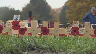 Wooden crosses planted in Field of Remembrance to commemorate lives of servicemen and women