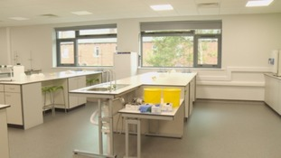 The new labs