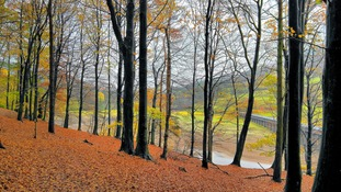 Autumn at Ladybower reservoir