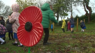 Schoolchildren scatter poppy seeds in honour of Remembrance Day