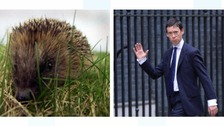 Rory Stewart has been involved in a prickly debate.