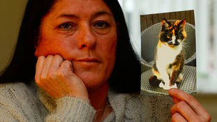 Andrea was distraught when she heared her cat's body had been incinerated