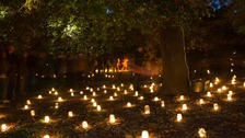 It's the Diwali Festival of Lights