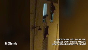 Man who saved pregnant woman clinging to window at Bataclan theatre speaks out