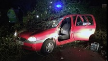 A man and a woman were injured in Buckinghamshire when a tree was blown onto their car at Bourne End.