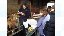 Children are learning about rural crime.