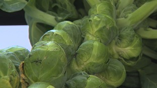 Brussels sprouts, as we now know them, were first cultivated in area which is now Belgium.