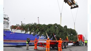 One of world's most famous Xmas trees passes through Immingham