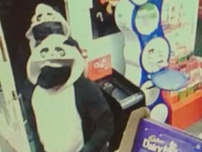 Police are searching for these panda impersonating robbers