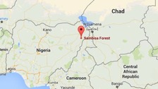 The operations took place in Boko Haram strongholds in the Sambisa Forest.