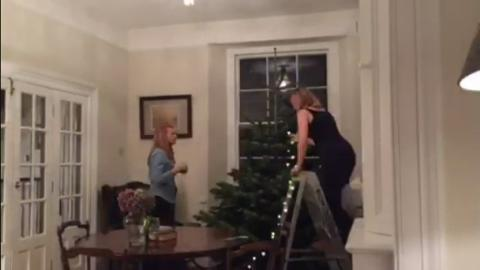 Christmas_tree_time_lapse_seq
