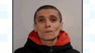 Missing Walsall woman Daniela Nedelcu
