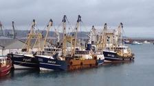 Fishing trawlers in Brixham