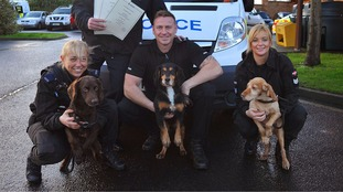 Three police sniffer dogs retire in time for Christmas