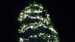 Uproar after Bradford Council cuts down community Christmas tree for second time