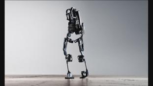 Bionic exoskeleton suit